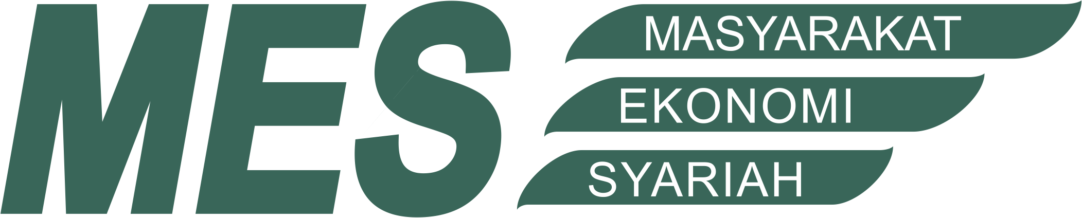 Logo-MES-Standart
